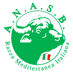 International Buffalo Federation
